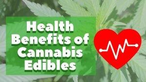 Health Benefits of Cannabis Edibles - Cannabis Lifestyle TV